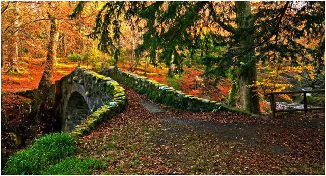 TOLLYMORE FOREST PARK … Bryansford, near Newcastle, County Down