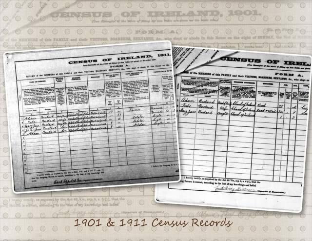 Bustard - 1901 & 1911 Census Records