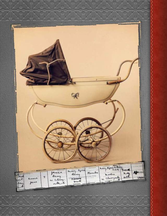 Birth Record - Annie Jane Berry