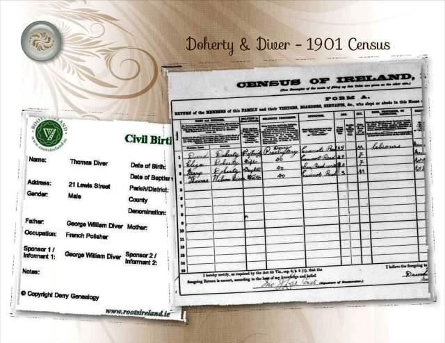 Doherty & Diver - 1901 Census