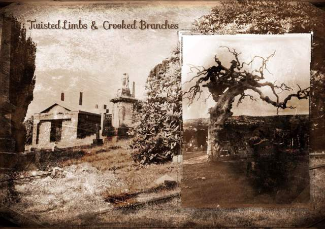 Twisted Limbs & Crooked Branches at the Derry City Cemetery 1